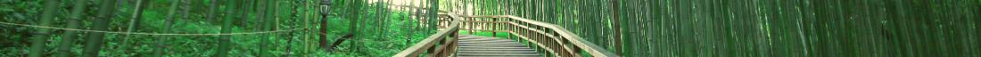 kintone ポータル スペース カバー画像(道シリーズ)